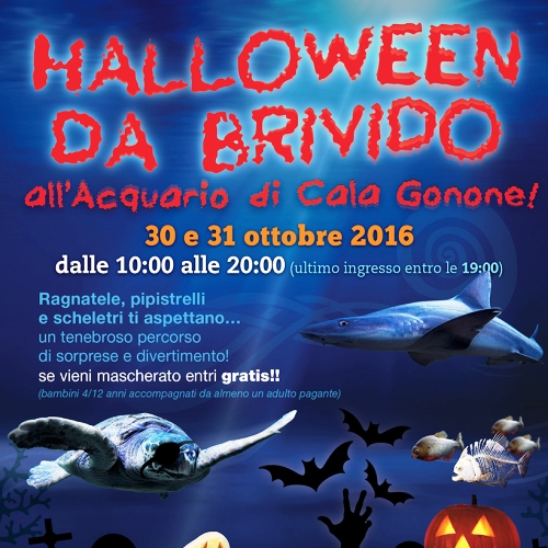 Halloween all'Acquario di Cala Gonone