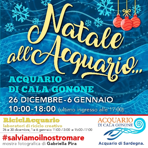 Vai alla news Natale all'Acquario di Cala Gonone