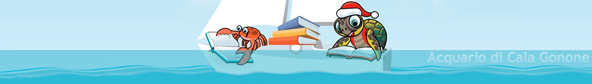 Libridamare libri e letture in barca a natale all for Acquario aperto prezzi